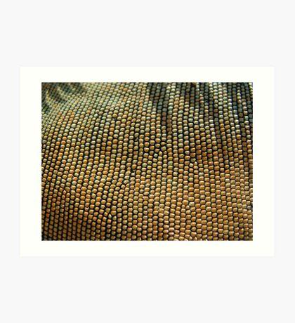 Iguana Beads Art Print