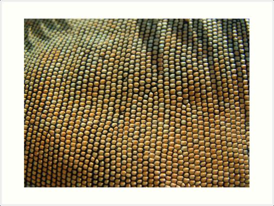 Iguana Beads by May Lattanzio