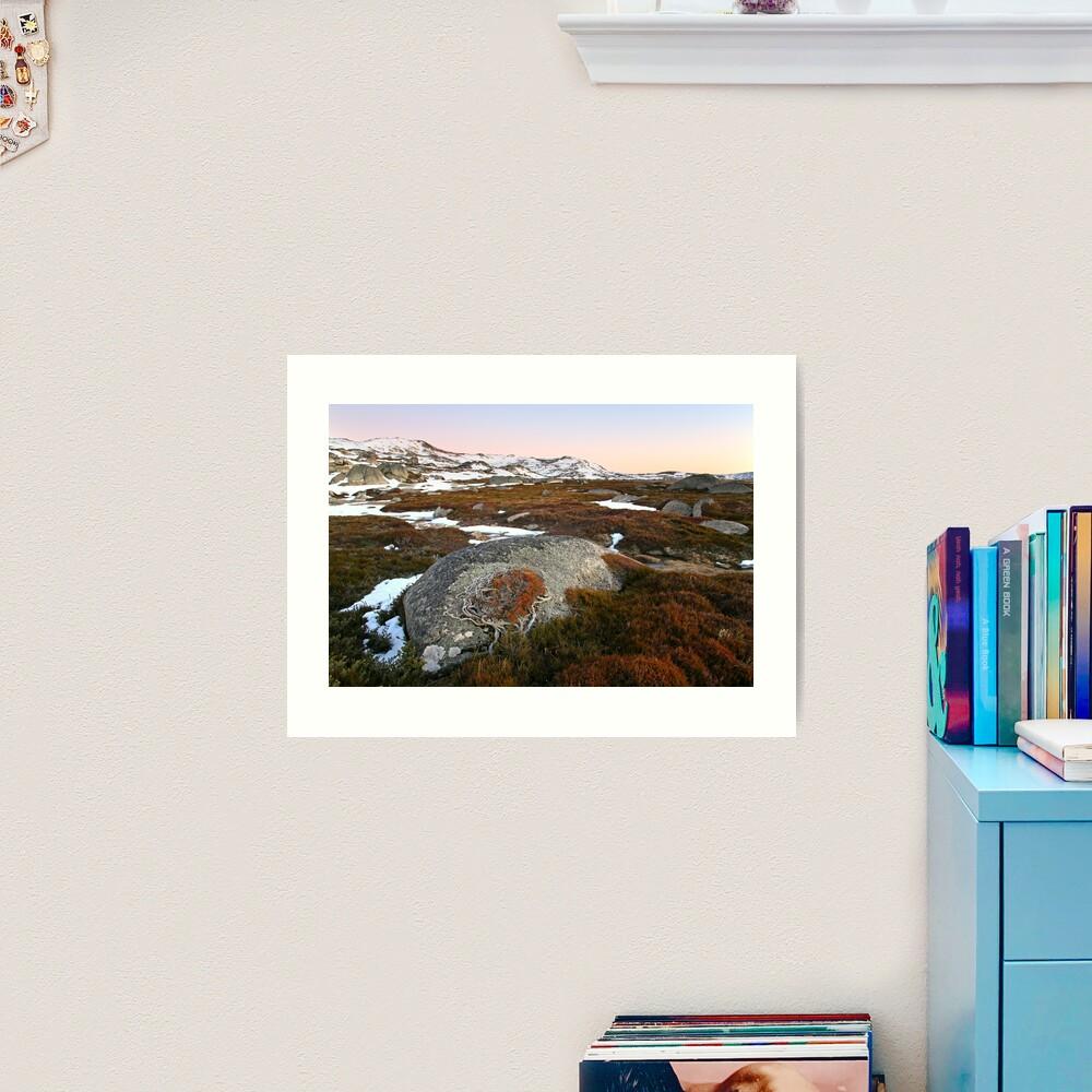 Wind swept valley, Kosciusko Nat. Park, Australia Art Print