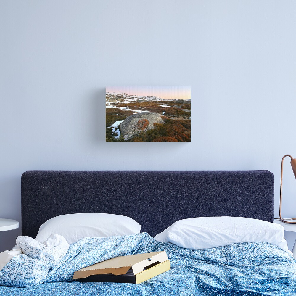 Wind swept valley, Kosciusko Nat. Park, Australia Canvas Print