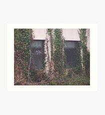 Natures Reclamation Of Windows Art Print