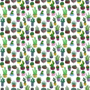 Succulents and Cacti white background by Bantambb