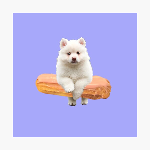 Cute Alaskan Malamute Dog jumping an éclair by Alice Monber Photographic Print