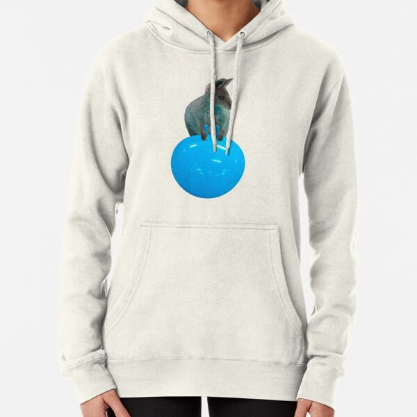 Cute kangaroo with a bouncy jumping hopping ball by Alice Monber Pullover Hoodie