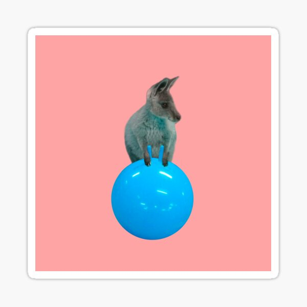 Cute kangaroo with a bouncy jumping hopping ball by Alice Monber Sticker