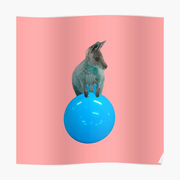 Cute kangaroo with a bouncy jumping hopping ball by Alice Monber Poster