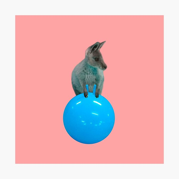 Cute kangaroo with a bouncy jumping hopping ball by Alice Monber Photographic Print