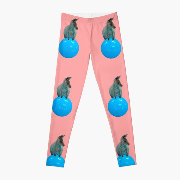 Cute kangaroo with a bouncy jumping hopping ball by Alice Monber Leggings