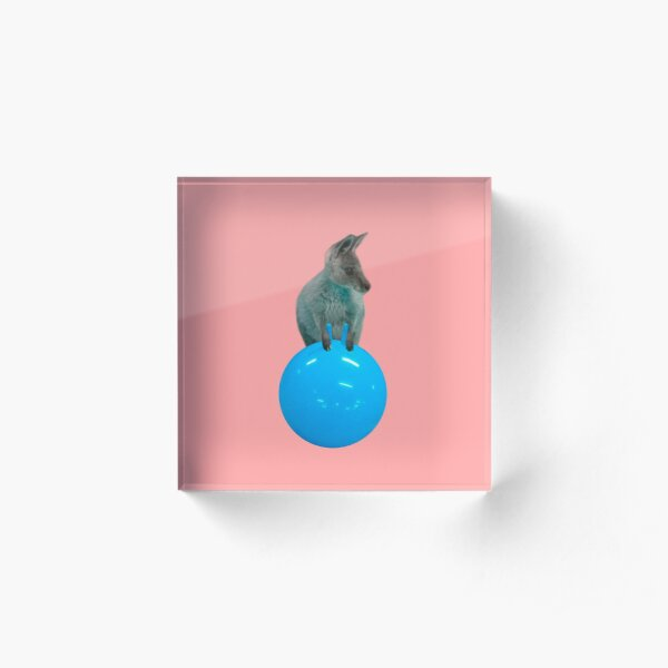 Cute kangaroo with a bouncy jumping hopping ball by Alice Monber Acrylic Block