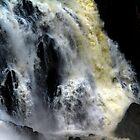 Barron Falls North Queensland Australia by Angelika  Vogel