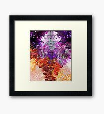 The Cosmic Network Framed Print