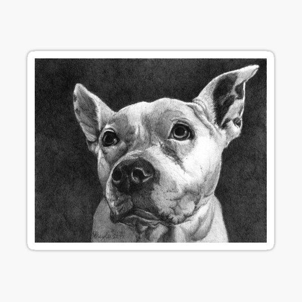 PURDY GIRL/ Pit Bull Terrier Sticker