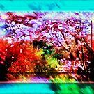 In flower by Rick Wollschleger