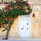 Mdina, Malta Door 2 by Alison Cornford-Matheson