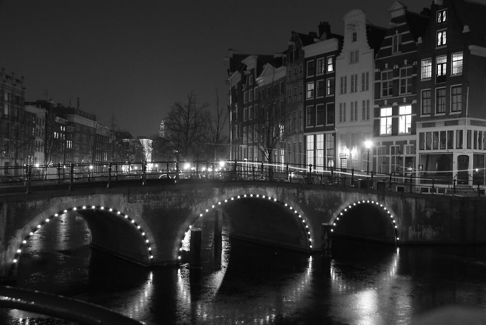 Frozen Amsterdam by Georgia Bayliff