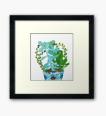 Indian Pot with Succulents Framed Print