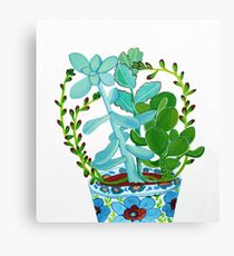 Indian Pot with Succulents Canvas Print