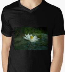 Early Morn Awakening Men's V-Neck T-Shirt