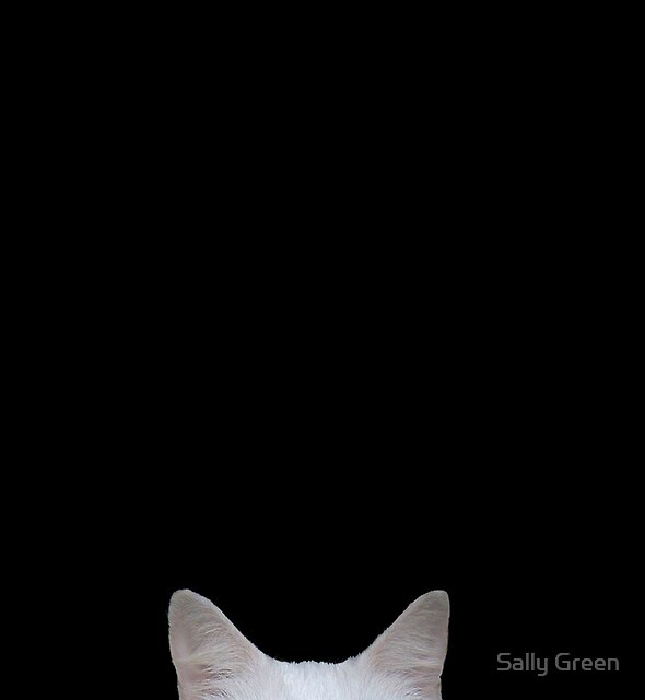 Boo.... by Sally Green