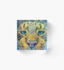 #DeepDreamed Cat v1449127170 Acrylic Block