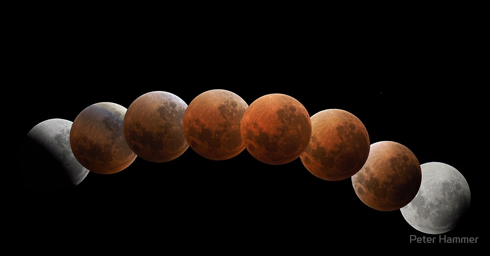 Lunar Eclipse by Peter Hammer