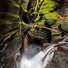 Blue Mountains Canyon 2 by Travis Easton