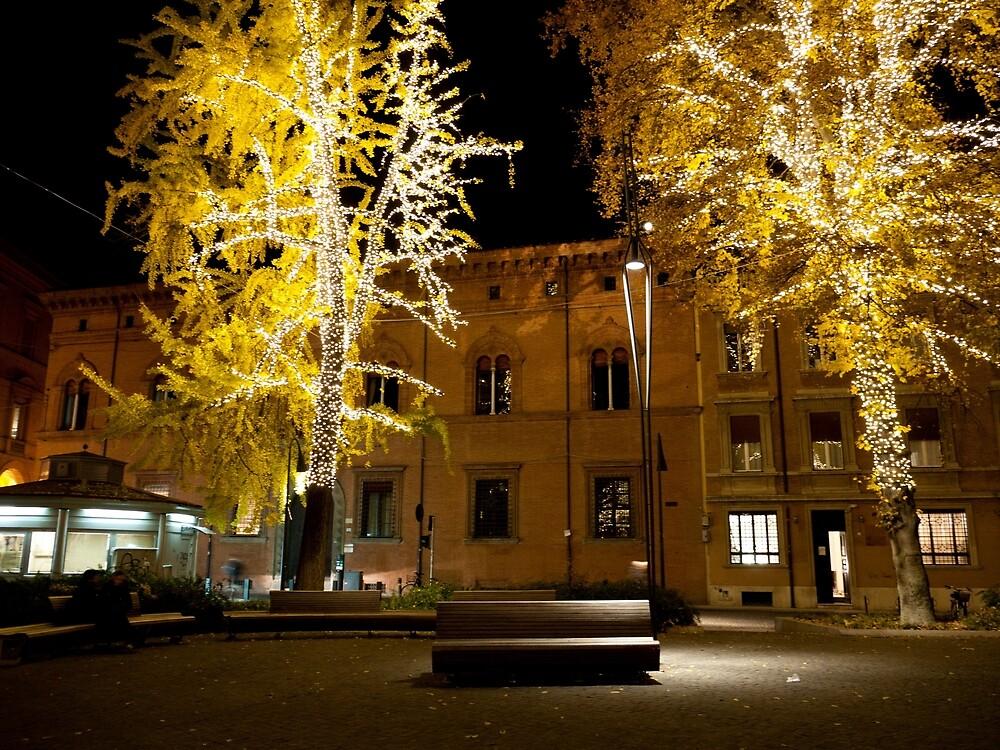 Giardini di Piazza Minghetti by Rae Tucker