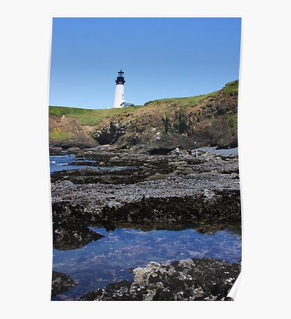 Tide Pools and Lighthouse Poster