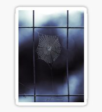 Midnight Blue Spider Web Sticker