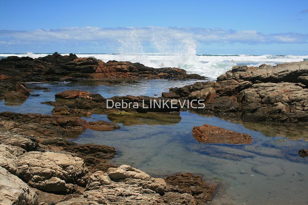 South Coast by Debra LINKEVICS