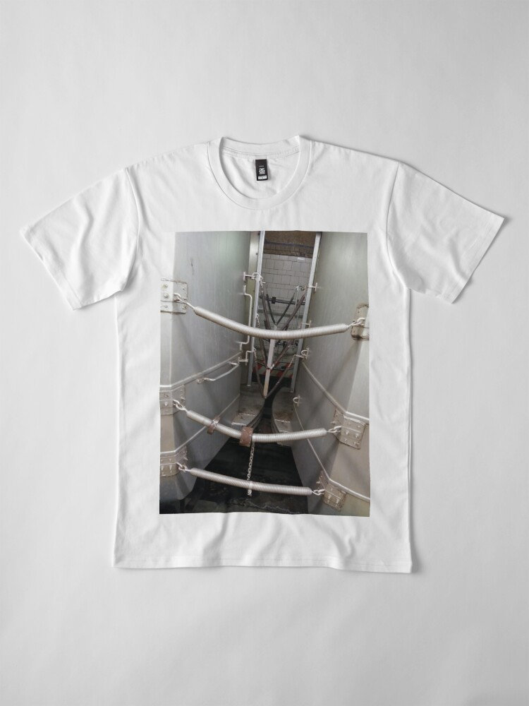 Alternate view of Street, City, Buildings, Photo, Day, Trees, New York, Manhattan, Brooklyn Premium T-Shirt