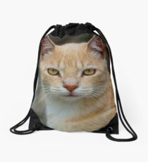 Feline- © Photography by The Clayman / Paul Moldovanos Drawstring Bag