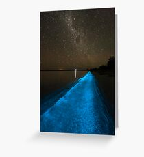 Bioluminescence under the Southern Sky Greeting Card