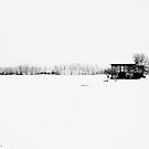snow in the field by Luca Renoldi