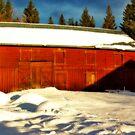 Big Old Barn by MarianaEwa