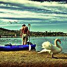 Swan Lake by Hollie Cook