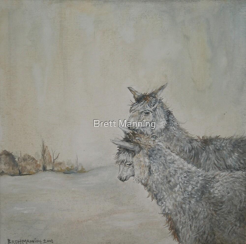 Two Llamas by Brett Manning