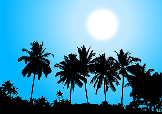 Tropical sunset, palm tree silhouette by Kudryashka