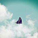 QUEEN OF THE SKY by DianaMatisz