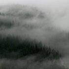 Mountain Magic by Olga Zvereva