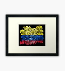 Colombia Vintage Flag Framed Print