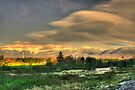 Light Fades on the Presidential Range by Wayne King