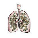 Breathe by Hannah Rothstein