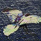"""up up to the sky"" [P1180654 _XnView _Photofiltre] by Juan Antonio Zamarripa [Esqueda]"