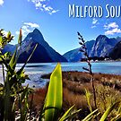 Milford Sound by Curious-Camera