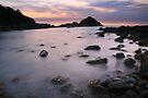 Pre-dawn, Mimosa Rocks National Park, Australia by Michael Boniwell