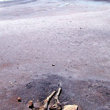 Salt Lake, The Coorong, South Australia by rozmcq