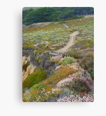 California Walk by Wstyd  Canvas Print