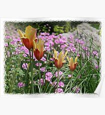 Spring Miniatures Poster