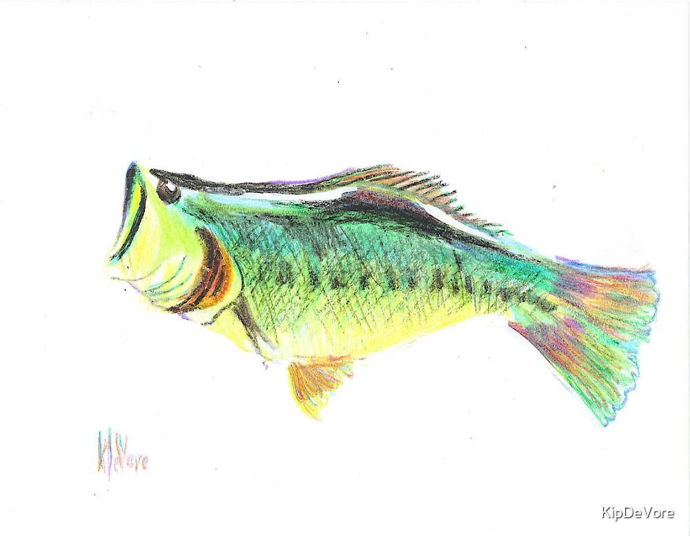 Fisherman's Delight by KipDeVore